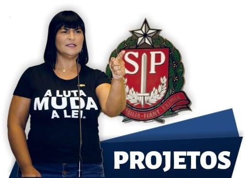Adriana Borgo - Homepage 2020 - Projetos 2